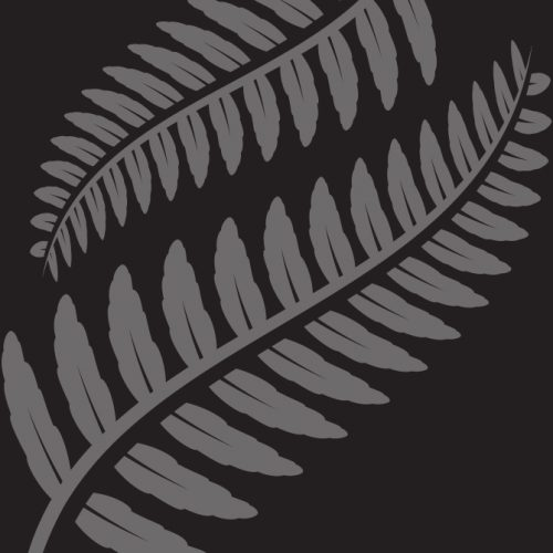 Waitangi Day 2019
