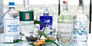 Roftop Bar and FINS Cellar Gin