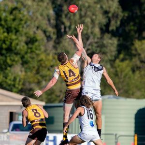 Southport Sharks NEAFL results Round 15