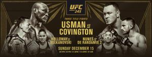 UFC 245 - Mackenzie's sports bar