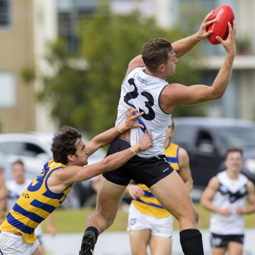 Southport Sharks v Sydney Uni NEAFL round 10