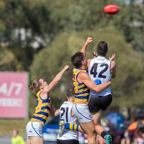 Southport Sharks NEAFL results Round 16